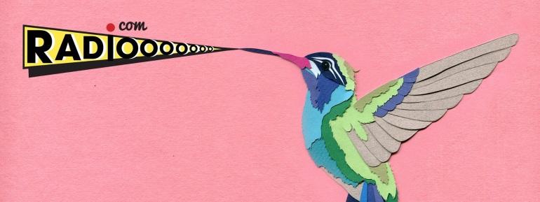 radiooooo-artwork-bird1